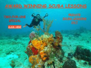 Diving with Loves Park Scuba